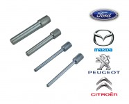 Kit messa in fase per Ford TDCi 1.4 e 1.6 L